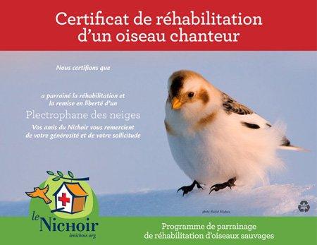 Certificat de réhabilitation d'un oiseau chanteur