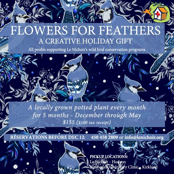 Flowers for Feathers 2018