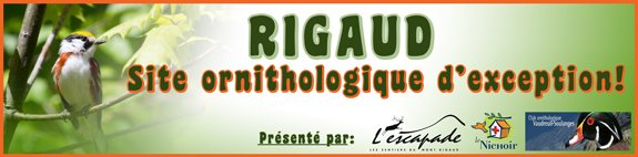 Rigaud - Site ornithologique d'exception