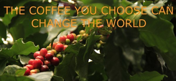 The coffee you choose can change the world