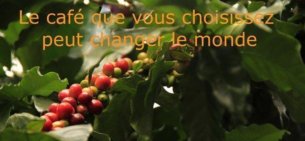 Votre choix de café peut changer le monde