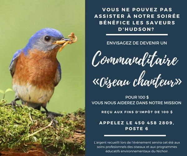 Commanditaire «oiseau chanteur »